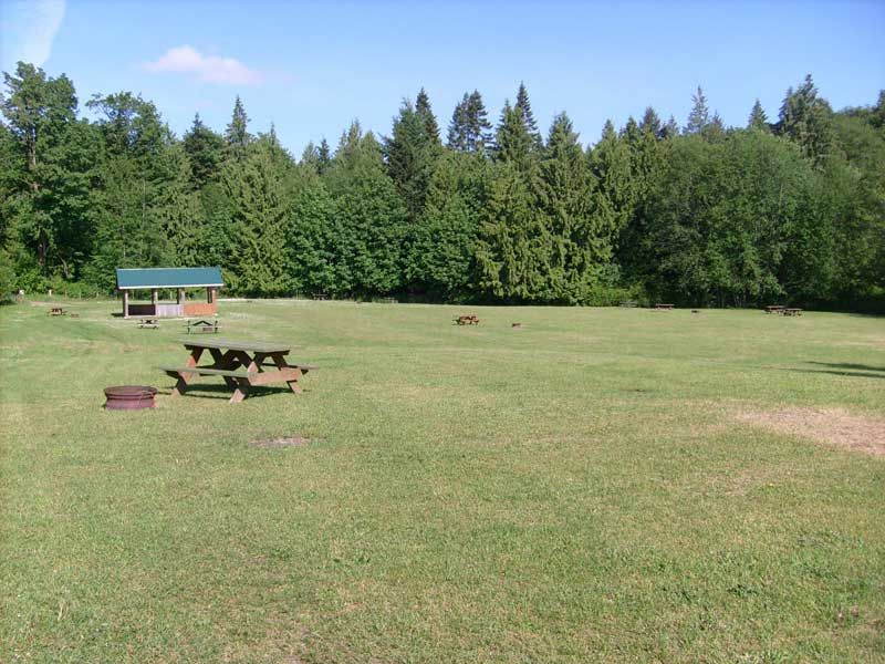 An image of the group site at Brannen lake capground and rv park in Nanaimo, BC